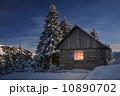 house 10890702