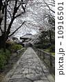 石畳 小路 本法寺の写真 10916501