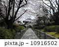 石畳 小路 本法寺の写真 10916502