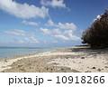 カイジ浜 星砂浜 海の写真 10918266