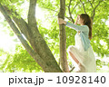 木登り美女3 10928140