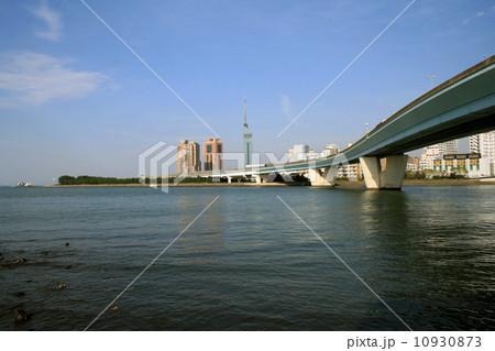 室見川河口から百道浜 10930873