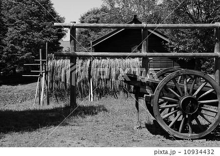 昭和の農家 10934432