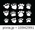Animal footprints silhouettes 10942991