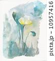 ポピー 花 水彩のイラスト 10957416