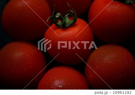 トマト 10961282