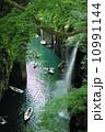 高千穂峡の新緑 10991144