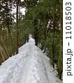 雪道 景信山 山道の写真 11018503