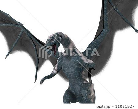 ドラゴンのイラスト素材 [11021927] - PIXTA