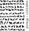 100 dogs 11024804
