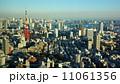 六本木ヒルズから見た東京タワー 11061356