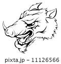イノシシ 猪 ベクトルのイラスト 11126566