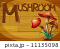A wooden frame with a mushroom 11135098