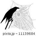 レイヴン ウェブ 背景のイラスト 11139684
