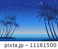 ビーチリゾートの星空 11161500