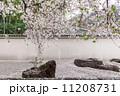 庭園 ロック 石の写真 11208731