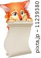 きつね キツネ 狐のイラスト 11239380