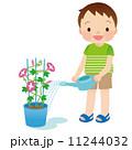 水やり 子供 朝顔のイラスト 11244032