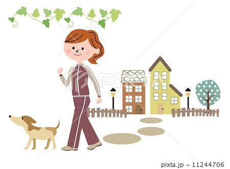 犬とウォーキング 11244706