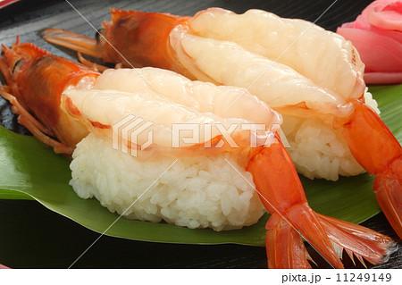 赤海老 アルゼンチン赤海老 寿司 アップ 11249149