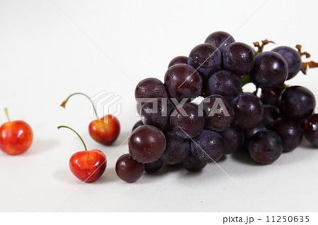 ぶどう 葡萄 ブドウ 11250635