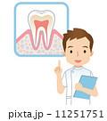 虫歯予防 人物 男性のイラスト 11251751