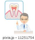 虫歯予防 人物 男性のイラスト 11251754