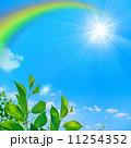 青空と虹と太陽と新緑 11254352