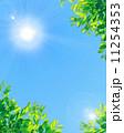 青空と太陽と新緑 11254353