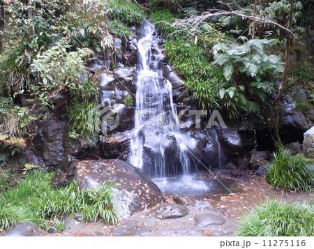 河津七滝(静岡県河津町) 11275116