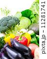 ブロッコリー 葉物野菜 野菜の写真 11281741