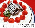 手作りのクリスマスケーキ 11285313