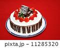 手作りのクリスマスケーキ 11285320