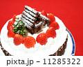 手作りのクリスマスケーキ 11285322
