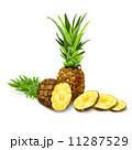 Pineapple isolated poster or emblem 11287529