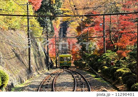 東京都 観光名所 高尾山の紅葉とケーブルカー 11290401