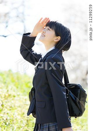桜と女子校生 11299259