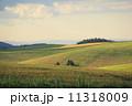 美瑛町 農地 畑の写真 11318009