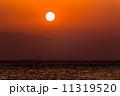 夕日 11319520