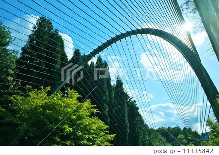 MIHOミュージアム前の吊橋より 11335842
