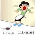 ゴキブリ ベクター 女性のイラスト 11340194