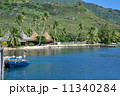 タヒチ海 11340284