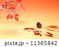 秋のイメージ 11365842