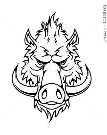 Head of a fierce wild boar 11368835