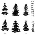 Pine trees collection 11387789