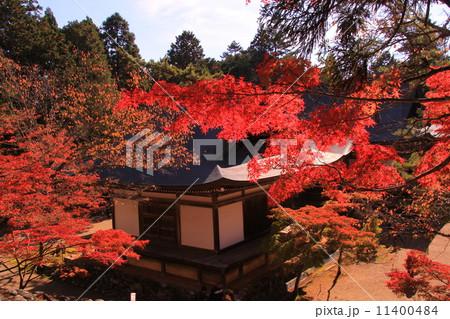 神護寺(京都 高雄山)五大堂前の紅葉 11400484