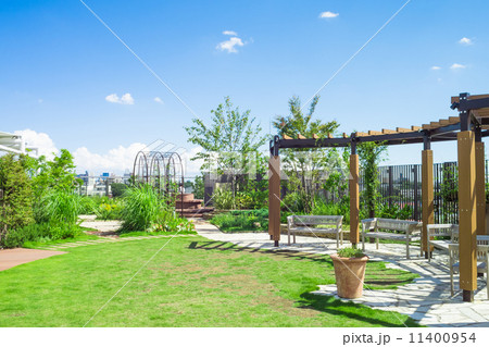 緑の屋上庭園 11400954