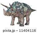 トリケラトプス 11404116