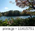 五色沼 (福島県) 11415751