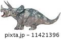 トリケラトプス☆Triceratops 11421396